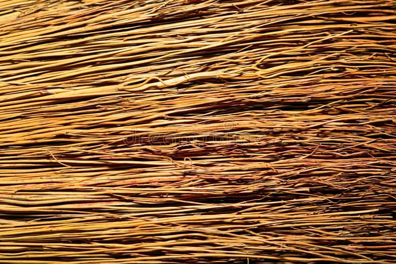 Texturbakgrund av en durenfilial arkivfoton