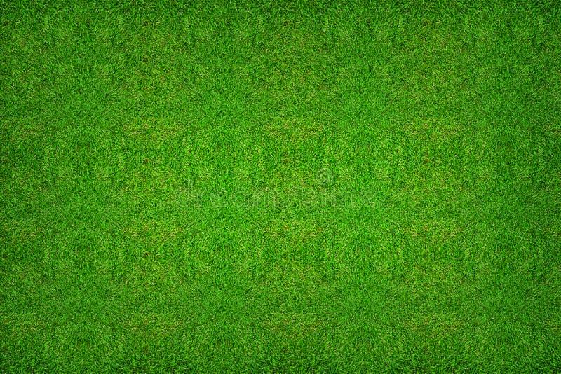 Texturbakgrund för grönt gräs för fotbollsport eller fotbollspor vektor illustrationer