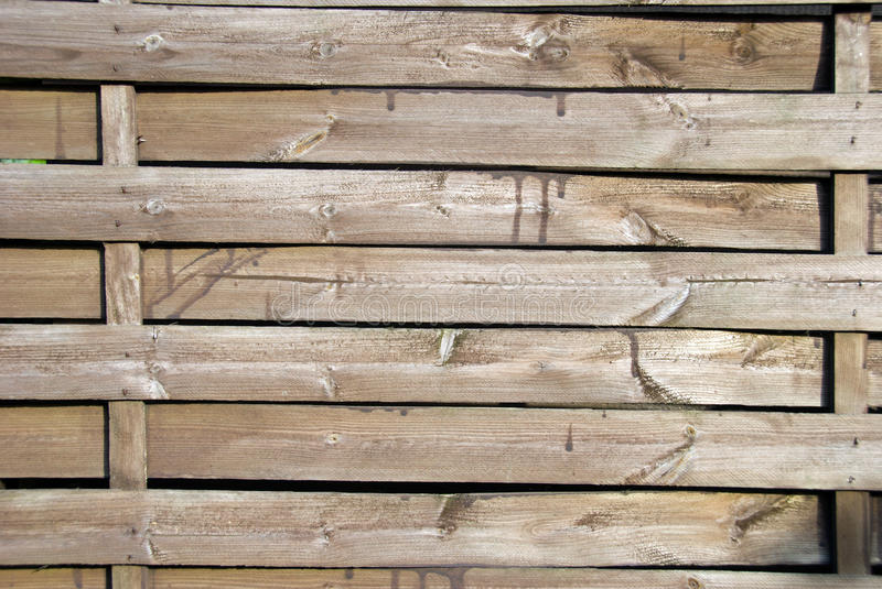 Texture. images stock
