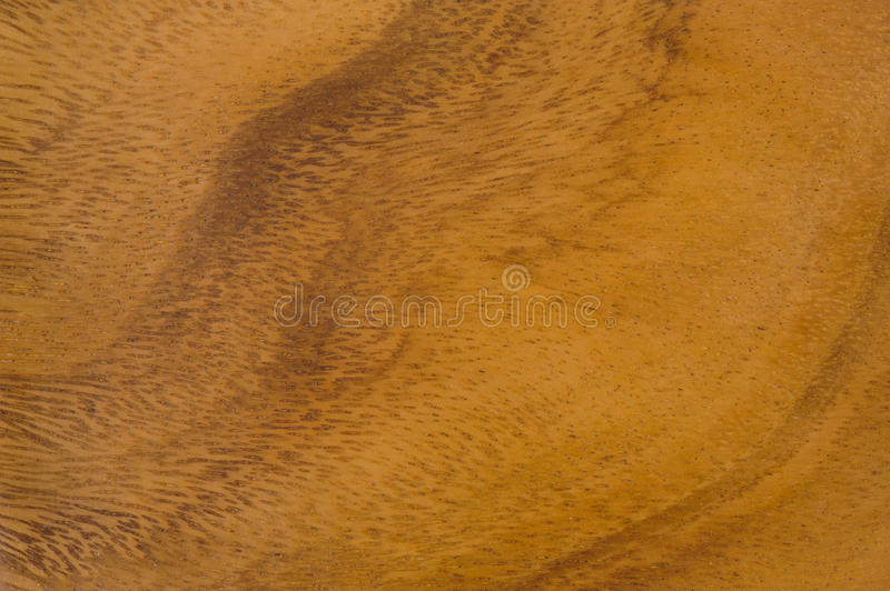 Texture. Natural pattern and texture of teakwood stock photos