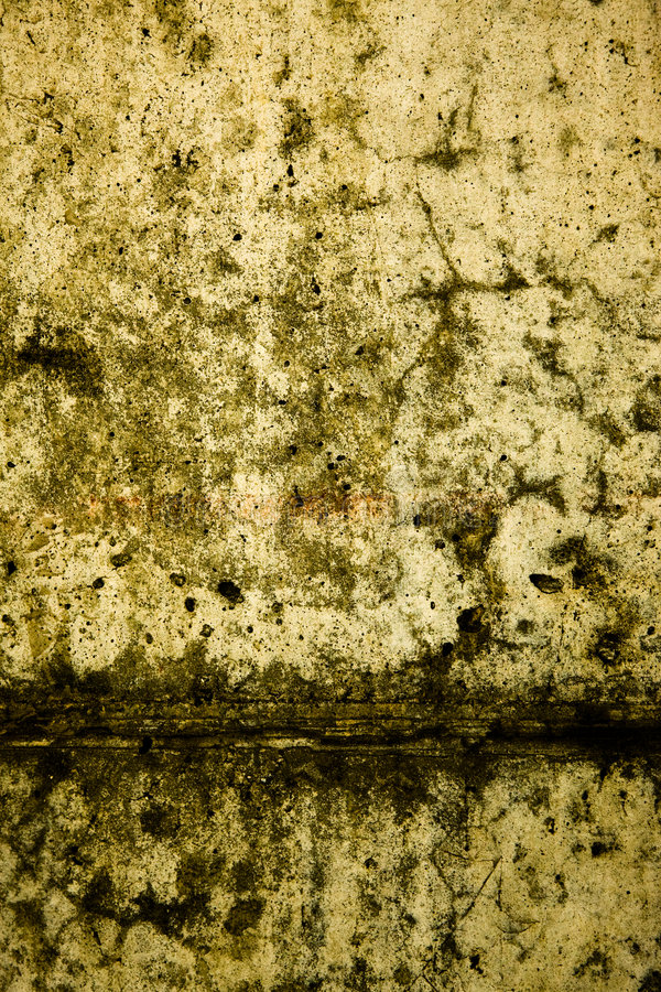 Texture 49 images stock