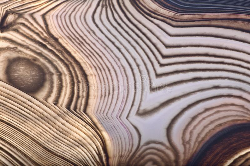 Texture of agate light and dark brown structure. Background with contrast agate structure royalty free stock image