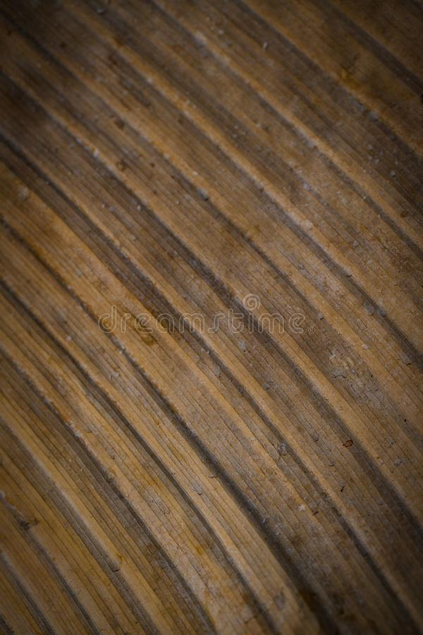 A texture of aged brown leaf stock images