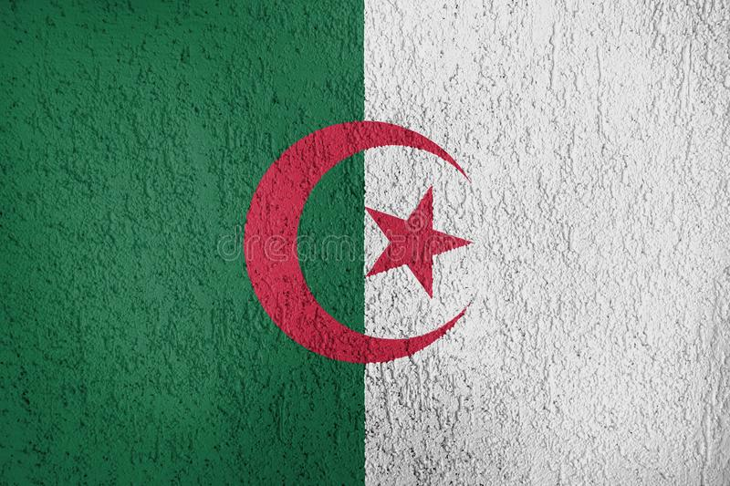 Texture of Algeria flag. The texture of Algeria flag on the wall of the plaster stock photography