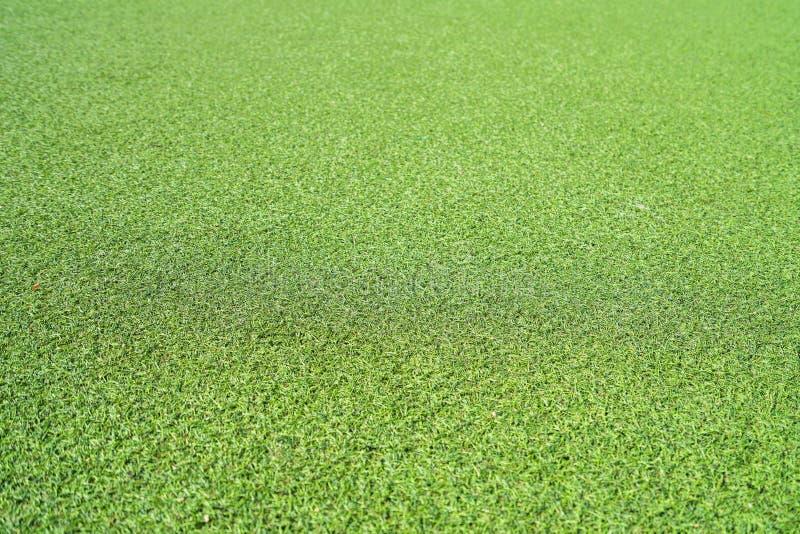 Texture artificielle d'herbe photographie stock libre de droits