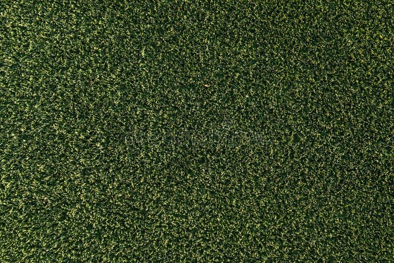 Texture artificielle de fond d'herbe verte photographie stock