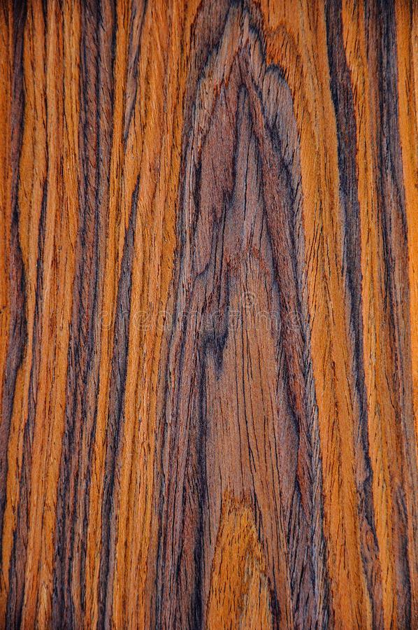 The texture of background an exotic tree. Walnut Aragon. royalty free stock photos