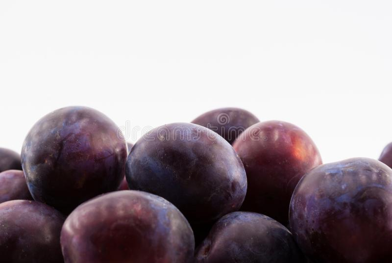 Fruit plums on white background stock photography