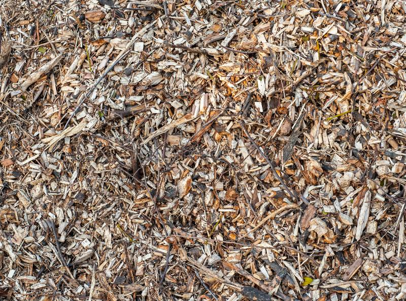 Texture or background of yellow pile of wooden mulch or wood waste stock photo