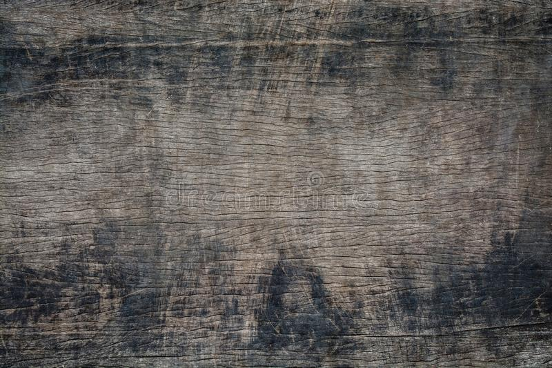 Texture of bark, wood grain background.  stock image