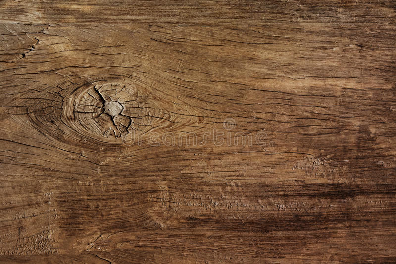 Texture of bark wood use as natural background royalty free stock photo