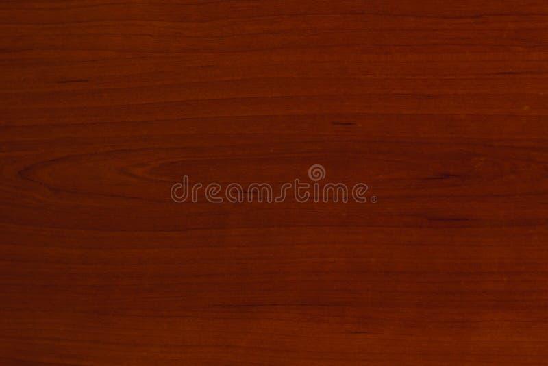 Texture of bark wood stock photo