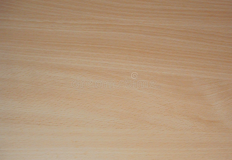 Texture Beech veneer stock photography