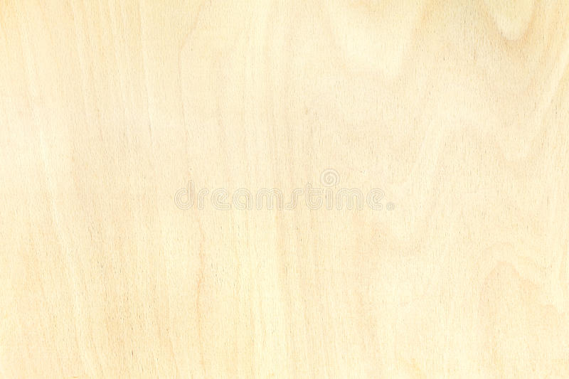 Texture of birch plywood board natural pattern background. Texture of birch plywood board. highly-detailed natural pattern background stock photography