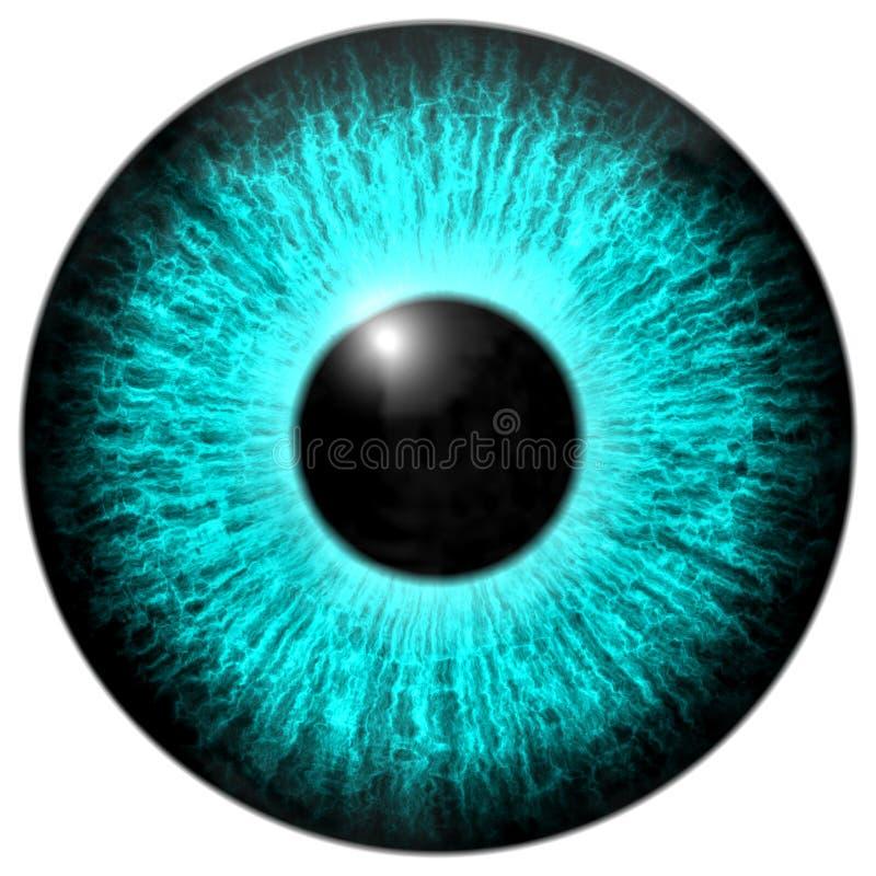 Texture bleue du globe oculaire 3d avec la frange noire illustration libre de droits