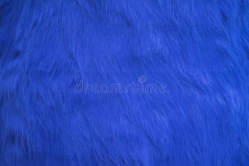 Texture of blue fur, bright fluffy background royalty free stock image