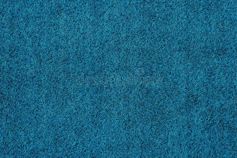 Texture of blue grass top view green lawn.  stock photos