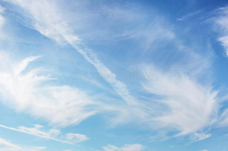 Texture blue sky and clouds in the form of wings.  stock image