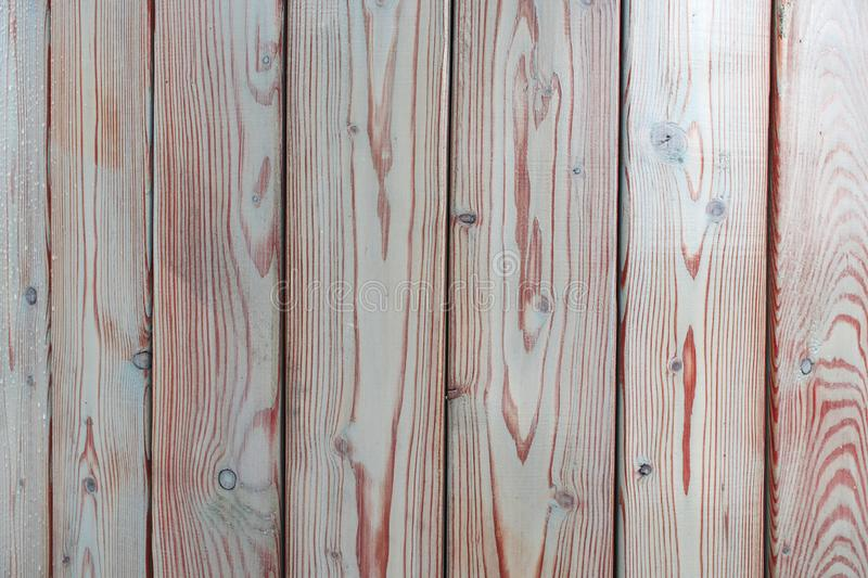 Texture boards which made of light wood. royalty free stock images