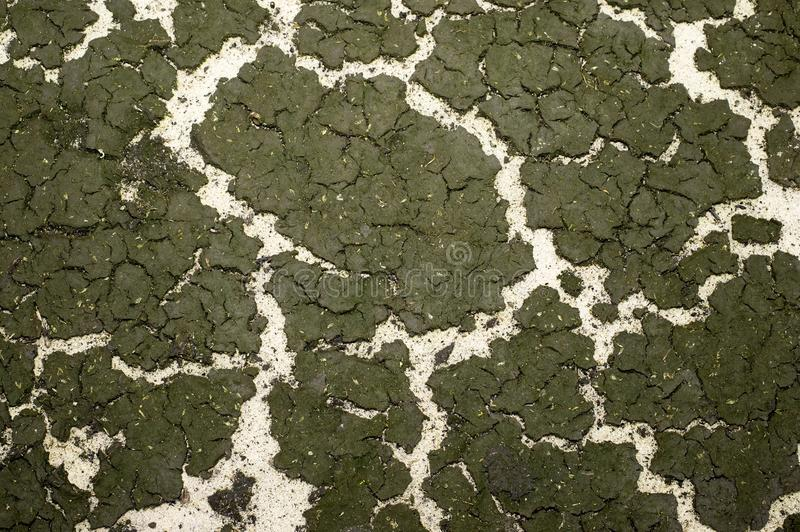 The texture of the bottom of the reservoir sand and the accumulation of silt on top. Background royalty free stock images