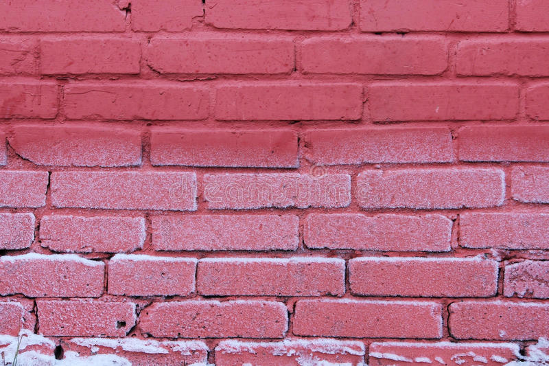 texture of bright red brick wall on a frost day. royalty free stock image
