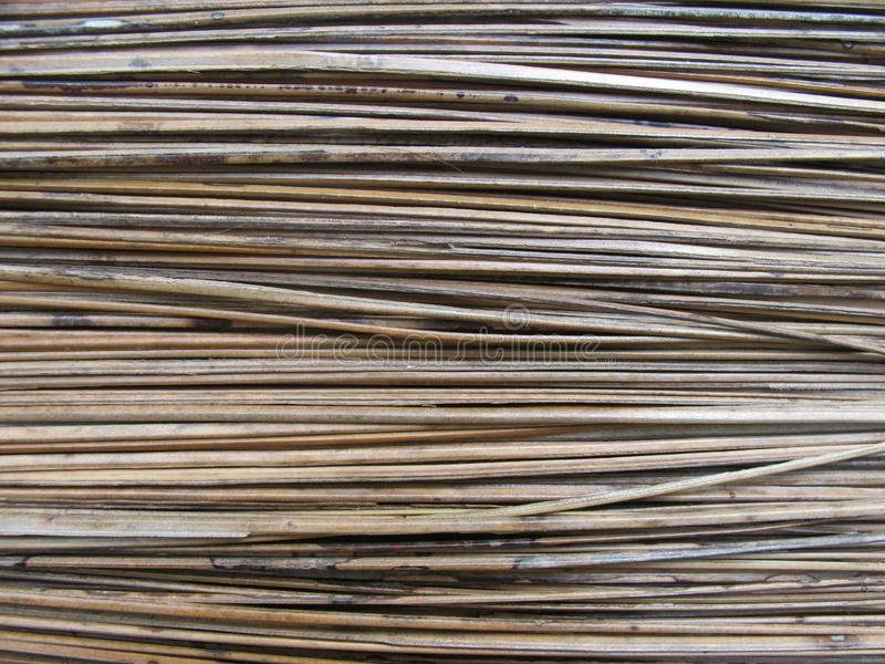 Texture of broom stick. Photography stock images