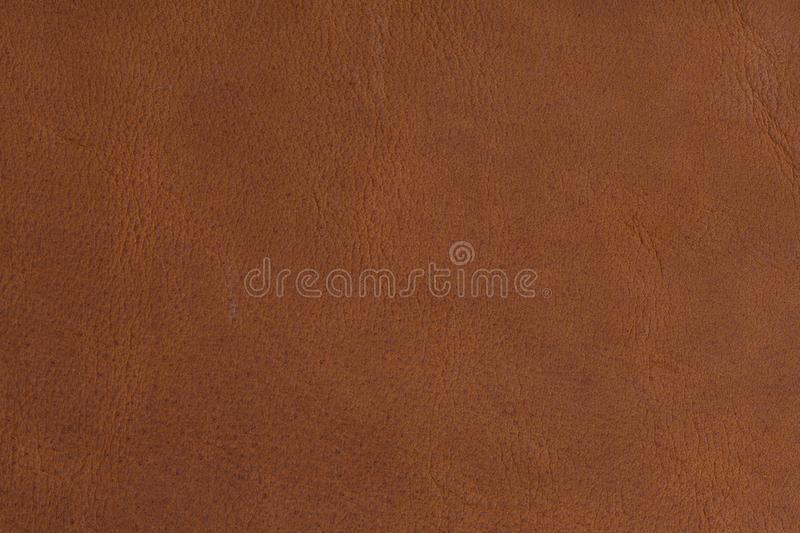 Texture of brown natural leather on macro. royalty free stock photos