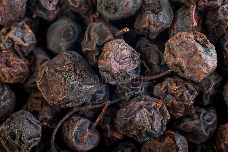 Texture of dried black berries, food background royalty free stock photography