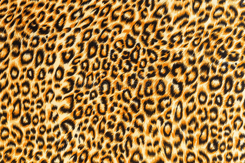 Texture of close up print fabric striped leopard. For background stock photos
