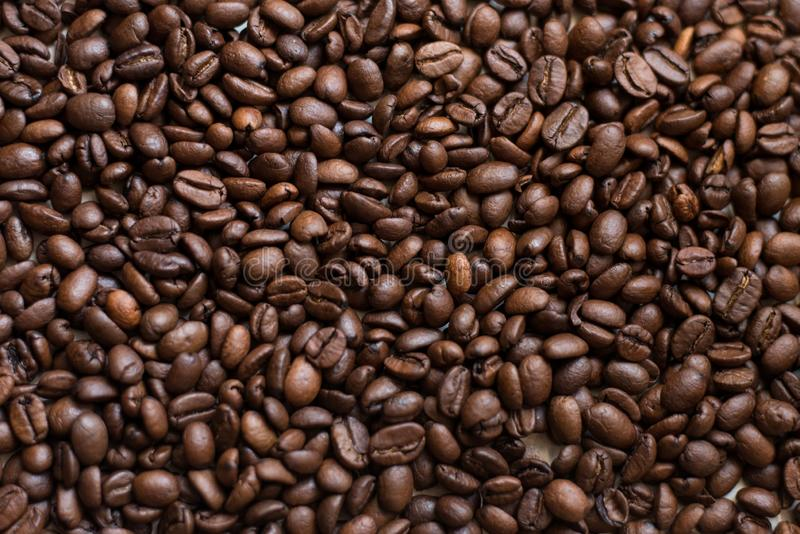 Texture of coffee beans scattered randomly. Brown texture royalty free stock photos