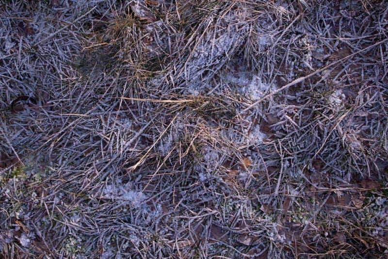 Texture of cold floor. In winter stock photo