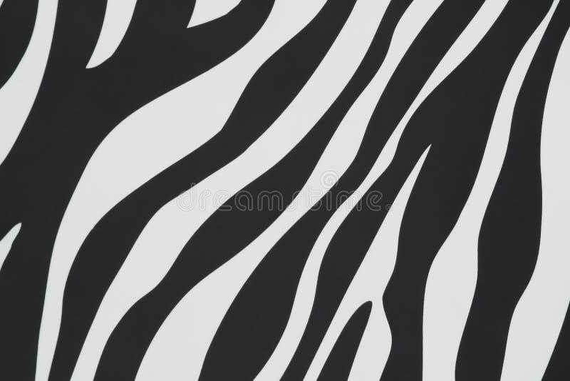 Texture colorée noire et blanche dans les rayures sans couture des modèles de zèbre sur le mur en béton pour le fond image libre de droits