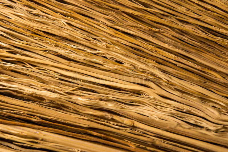 Texture color brown royalty free stock photo