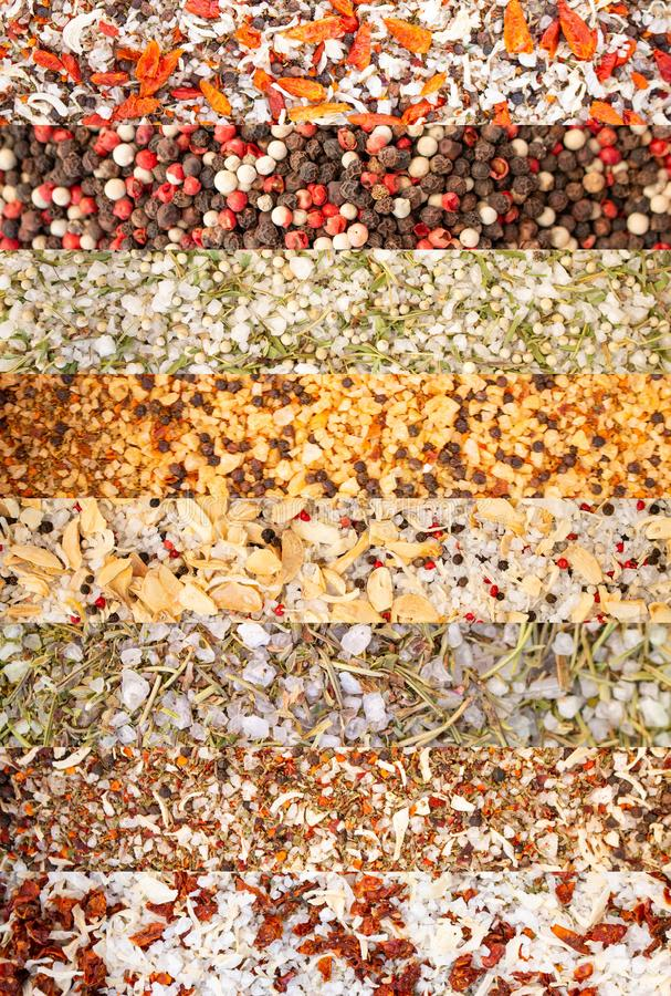 Collage of different herbs and spices Peppers, Sea salt, dried vegetables, Oregano, Rosemary, Thyme stock photos