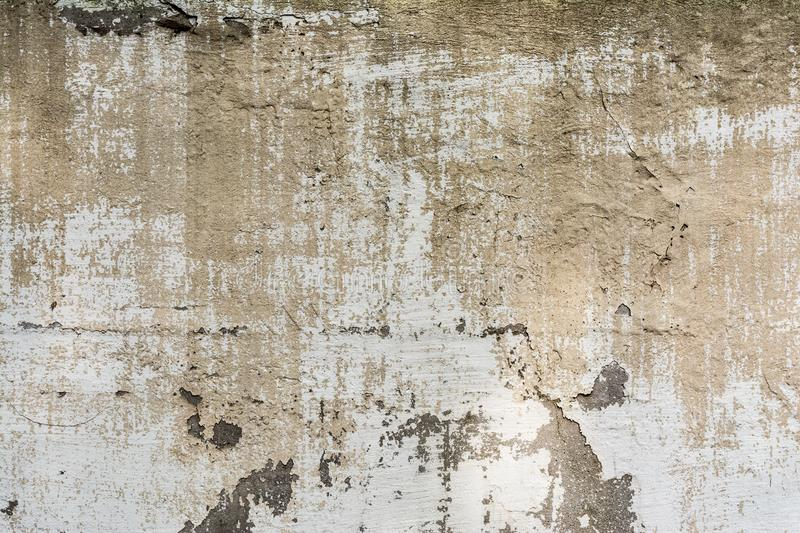 Texture concrete wall with destroyed plaster layer and paint, shadow from trees, architecture abstraction background royalty free stock images