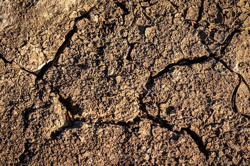 Texture of cracked ground stock photography