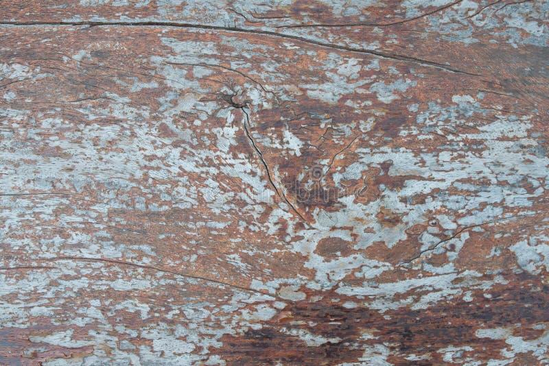 Texture détaillée approximative de vintage grunge en bois photo libre de droits