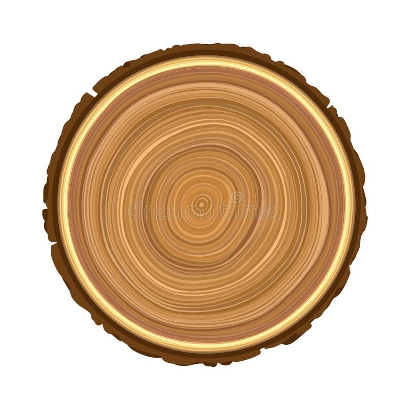 Texture d'arbre brun en bois scié d'objet illustration de vecteur