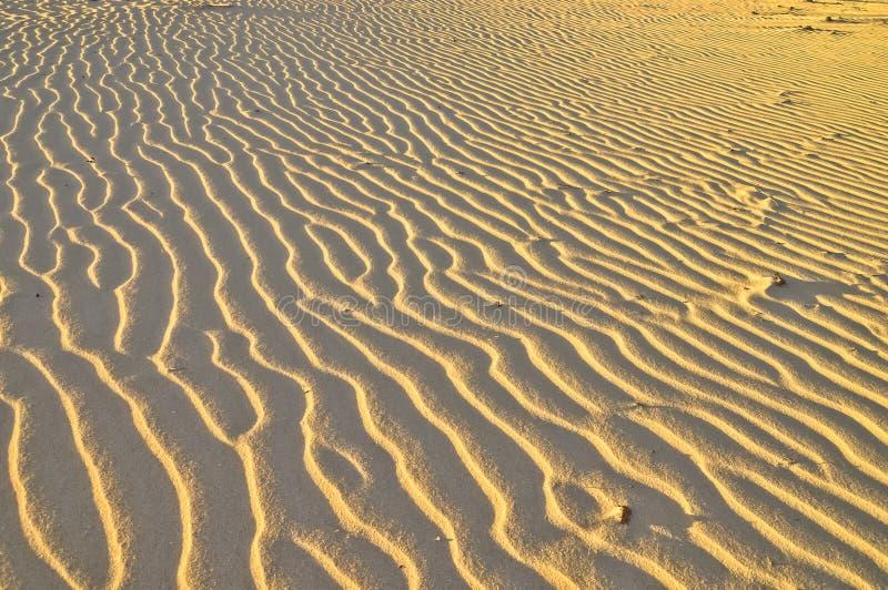 Texture d'ondes de sable de désert de coucher du soleil images libres de droits