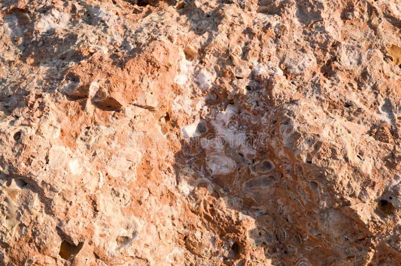 texture d'un brun, s'enflant, coffre poreux pointu de la pierre en pierre avec des gisements de sel Le fond photographie stock libre de droits