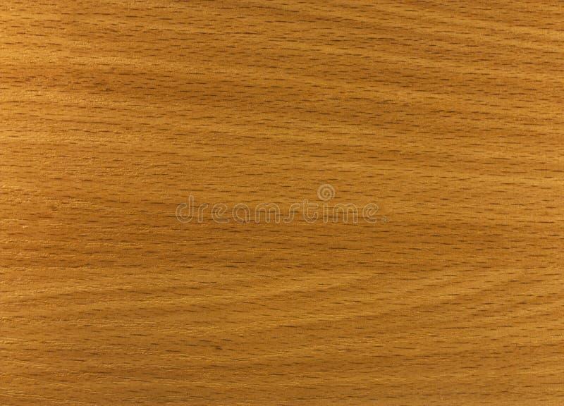 Texture d'une surface en bois photos libres de droits
