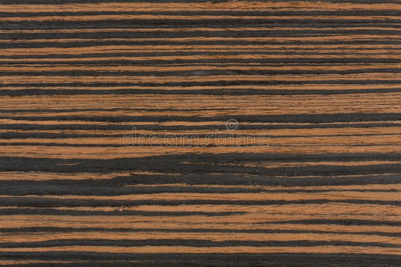 Texture of dark ebony wood. Dark natural background. royalty free stock images
