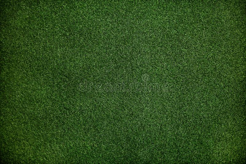 Texture Dark Green Grass Surface Closeup Wallpaper Concept stock photography
