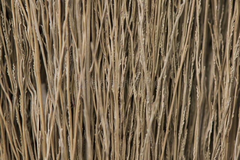 Texture de balai, texture grunge d'herbe sèche images libres de droits