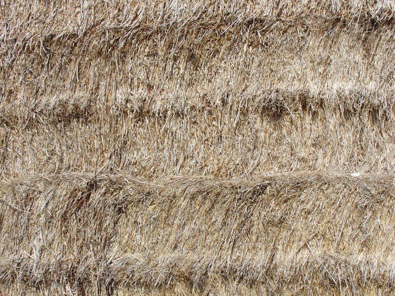Texture de balle de foin images libres de droits