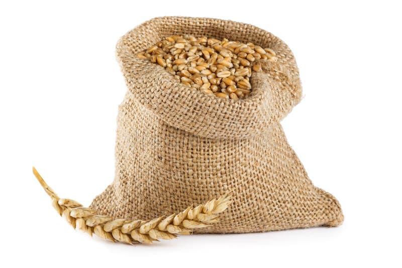 Texture de blé images stock