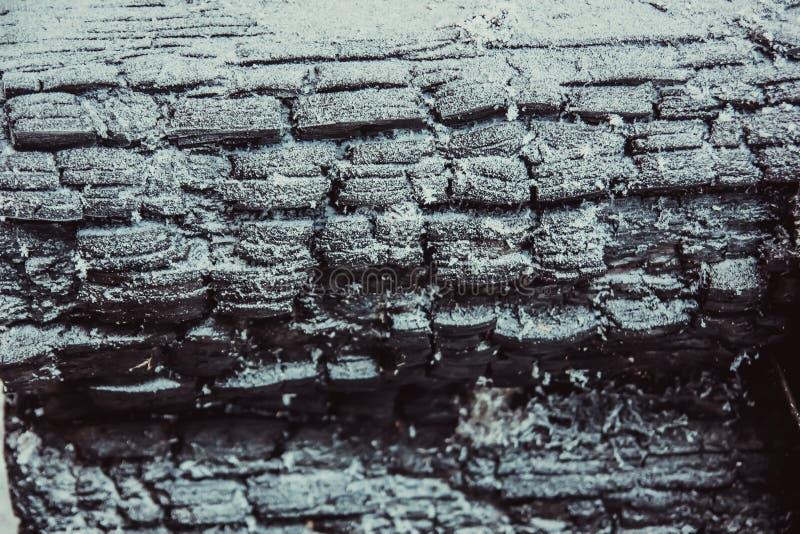 Texture de bois carbonisé images libres de droits