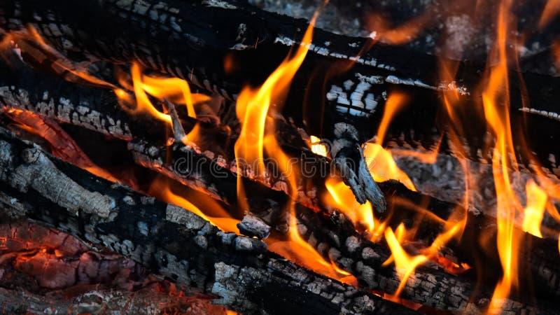 Texture de bois de chauffage, la Manche Art Banner de Youtube images libres de droits