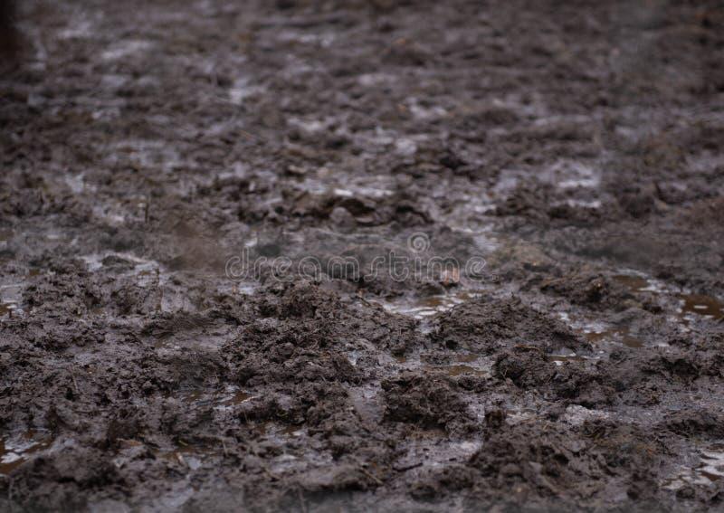 Texture de boue et de flaques - gros plan photo stock