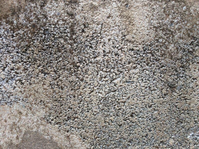 Texture de brique photographie stock